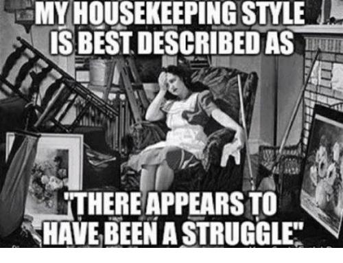my housekeeping style is best described as there appearsto have 27170115 ✅ 25 best memes about housekeeping housekeeping memes
