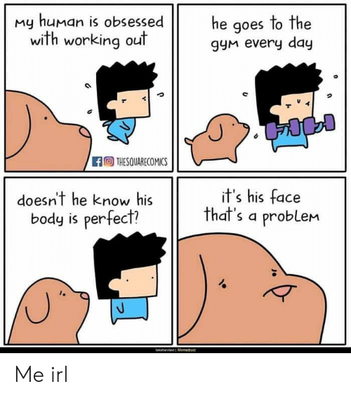 Gym, Working Out, and Irl: my human is obsessede aoes to the  he goes lo The  with working out  gyM every day  THESQUARECOMICS  doesn't he know his  body is perfect?  it's his face  that's a problem Me irl
