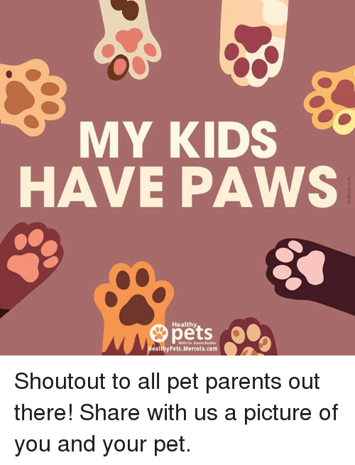 Memes, Parents, and Pets: MY KIDS  HAVE PAWS  Healthy  pets  With Dr. Karen Becker  ealthyPets.Mercola.com Shoutout to all pet parents out there! Share with us a picture of you and your pet.