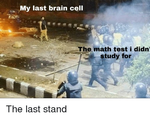 Brain, Math, and Test: My last brain cell  The math test i didn  study for