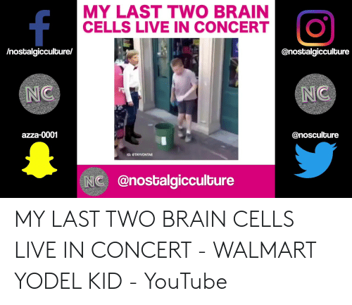 00a66a69a1 MY LAST TWO BRAIN CELLS LIVE IN CONCERT Nostalgicculture NC NC Azza ...