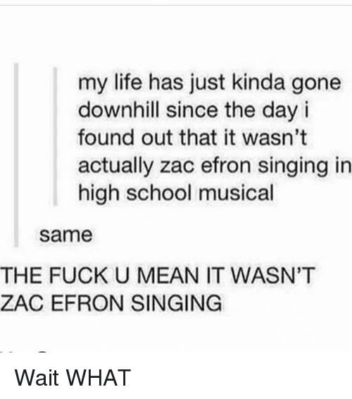 High School Musical, Life, and Memes: my life has just kinda gone  downhill since the day i  found out that it wasn't  actually zac efron singing in  high school musical  same  THE FUCK U MEAN IT WASN'T  ZAC EFRON SINGING Wait WHAT
