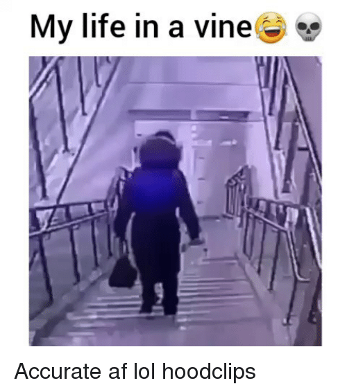 Af, Funny, and Life: My life in a vine Accurate af lol hoodclips