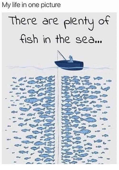Theres Plenty Of Fish In The Sea Hookup Site