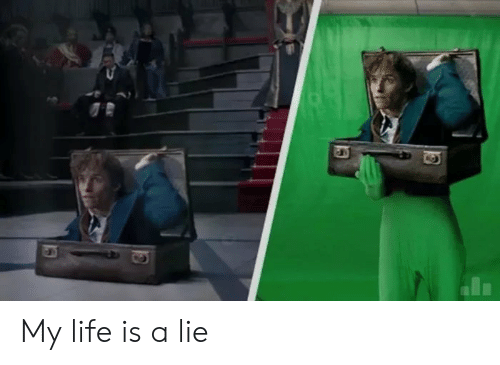 Life, Lie, and  My Life: My life is a lie