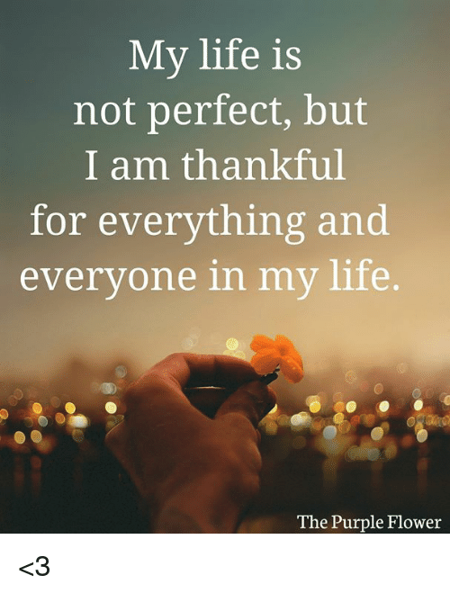 50+ Great My Life Is Perfect - good quotes