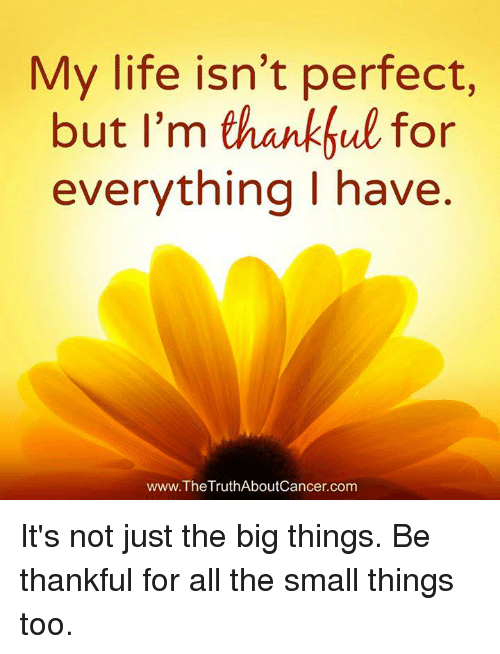 my life isnt perfect but im thankful for everything i 7420129 my life isn't perfect but i'm thankful for everything i have
