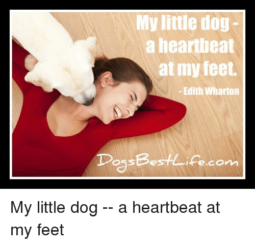 My Little Dog A Heartheat At My Feet Edith Wharton Possbestifecon My