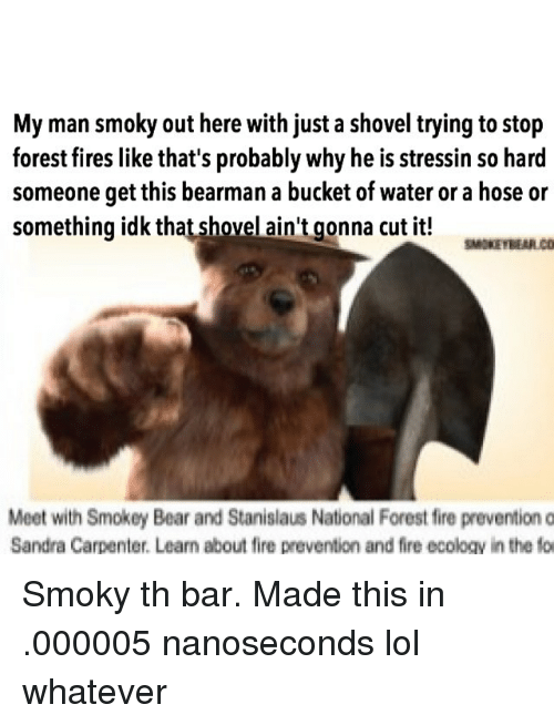 my man smoky out here with just a shovel trying 25052530 ✅ 25 best memes about smokey bear smokey bear memes