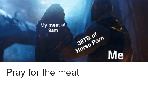 Horse, Porn, and Dank Memes: My meat at  3am  38TB of  Horse Porn Pray for the meat