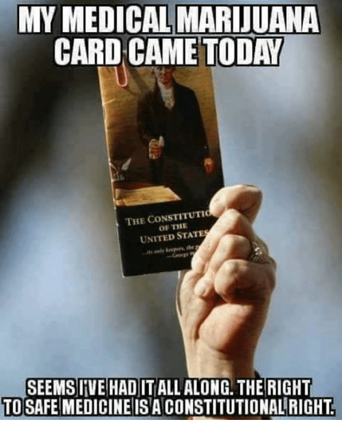 Memes, Marijuana, and Today: MY MEDICAL MARIJUANA  CARD CAME TODAY  THE CONSTITUTIC  OF THE  UNITED STATE  SEEMSIIVE HAD IT ALL ALONG. THE RIGHT  TO SAFE MEDICINE ISA CONSTITUTIONALRIGHT