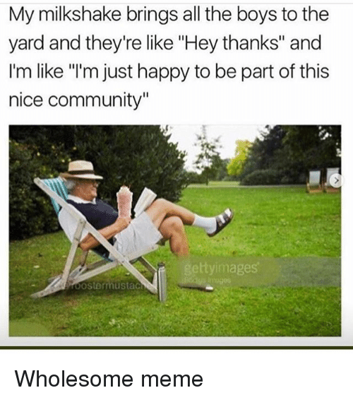 """Community, Meme, and Memes: My milkshake brings all the boys to the  yard and they're like """"Hey thanks"""" and  I'm like """"'m just happy to be part of this  nice community""""  ttyimages Wholesome meme"""