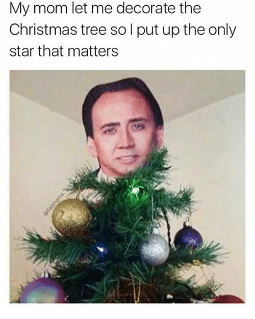 Christmas, Christmas Tree, and Star: My mom let me decorate the  Christmas tree so l put up the only  star that matters