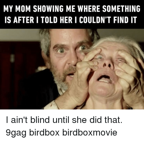 9gag, Memes, and Mom: MY MOM SHOWING ME WHERE SOMETHING  IS AFTERI TOLD HER I COULDN'T FIND IT I ain't blind until she did that.⠀ 9gag birdbox birdboxmovie