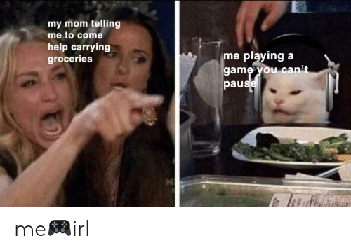 Game, Help, and Irl: my mom telling  me to come  help carrying  groceries  playing  game you can't  pause  me me🎮irl