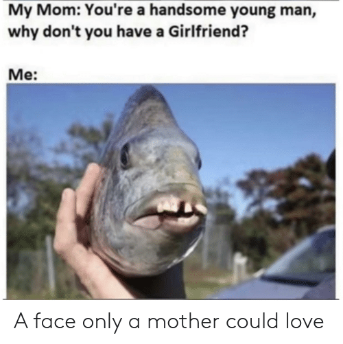 Love, Reddit, and Girlfriend: My Mom: You're a handsome young man,  why don't you have a Girlfriend?  Me: A face only a mother could love