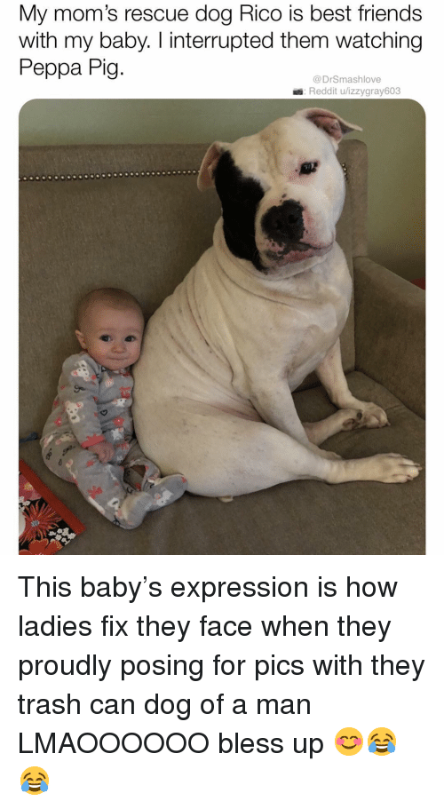 Bless Up, Friends, and Memes: My mom's rescue dog Rico is best friends  with my baby. I interrupted them watching  Peppa Pig  @DrSmashlove  Reddit u/izzygray603 This baby's expression is how ladies fix they face when they proudly posing for pics with they trash can dog of a man LMAOOOOOO bless up 😊😂😂