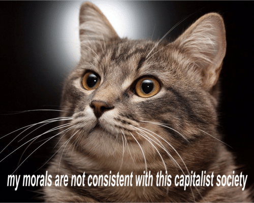 Capitalist, This, and Morals: my morals are notconsistent with this capitalist societ/