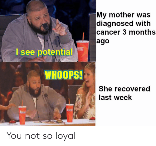 Cancer, Dank Memes, and Mother: My mother was  diagnosed with  cancer 3 months  ago  I see potential  WHOOPS!  She recovered  last week You not so loyal