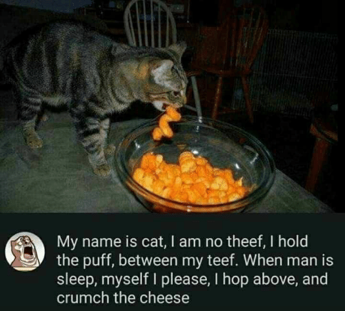Sleep, Cat, and Cheese: My name is cat, I am no theef, I hold  the puff, between my teef. When man is  sleep, myself I please, I hop above, and  crumch the cheese