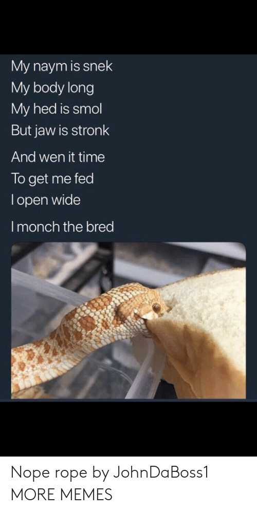 Dank, Memes, and Target: My naym is snek  My body long  My hed is smol  But jaw is stronk  And wen it time  To get me fed  l open wide  I monch the bred Nope rope by JohnDaBoss1 MORE MEMES