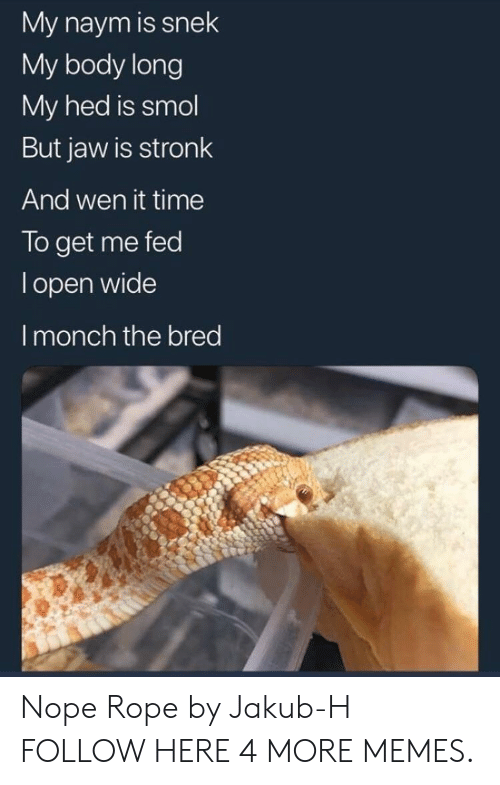 Dank, Memes, and Target: My naym is snek  My body long  My hed is smol  But jaw is stronk  And wen it time  To get me fed  l open wide  I monch the bred Nope Rope by Jakub-H FOLLOW HERE 4 MORE MEMES.