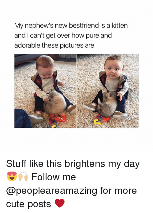 Cute, Memes, and Pictures: My nephew's new bestfriend is a kitten  and I can't get over how pure and  adorable these pictures are Stuff like this brightens my day 😍🙌🏼 Follow me @peopleareamazing for more cute posts ❤️