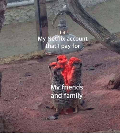 Family, Friends, and Netflix: My Netflix account  hat I pay for  My friends  and family
