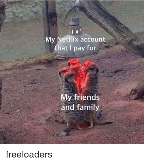 Family, Friends, and Netflix: My. Netflix account  that I pay fon  My friends  and family freeloaders
