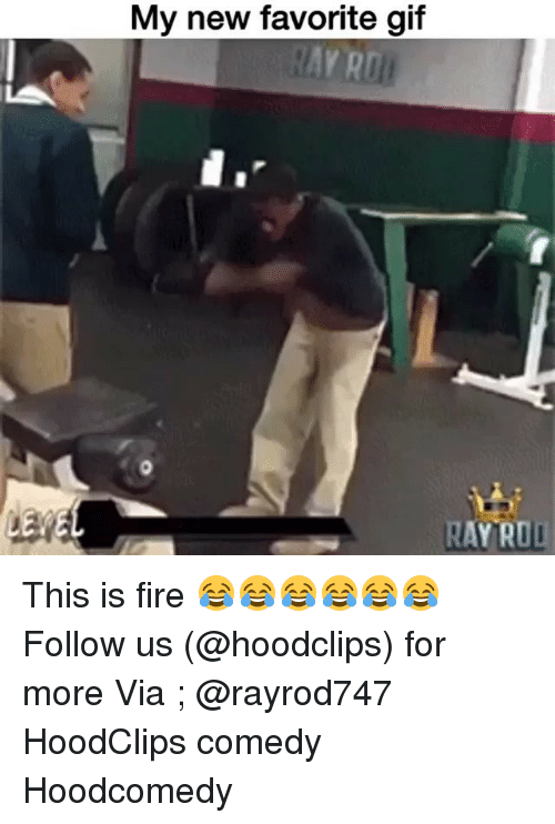 Funny, Git, and Ray: My new favorite git  AYRD  RAY ROLI This is fire 😂😂😂😂😂😂 Follow us (@hoodclips) for more Via ; @rayrod747 HoodClips comedy Hoodcomedy