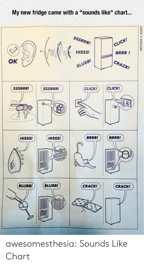 """Click, Tumblr, and Blog: My new fridge came with a """"sounds like"""" chart...  cil  BRRR !  CRACK!  HISSS!  OK  CLICK! CLICK!  -1に]  BRRR!  BRRR!  HISSS!  HISSS!  CRACK!  CRACK!  BLUBB! BLUBB! awesomesthesia:  Sounds Like Chart"""