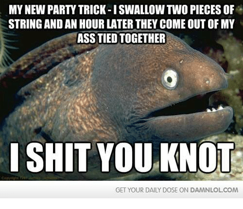 Memes, 🤖, and String: MY NEW PARTY TRICK-I SWALLOW TWO PIECESOF  STRING AND AN HOUR LATER THEY COME OUT OF MY  ASSTIEDTOGETHER  I SHIT YOU KNOT  GET YOUR DAILY DOSE ON DAMNLOLCOM