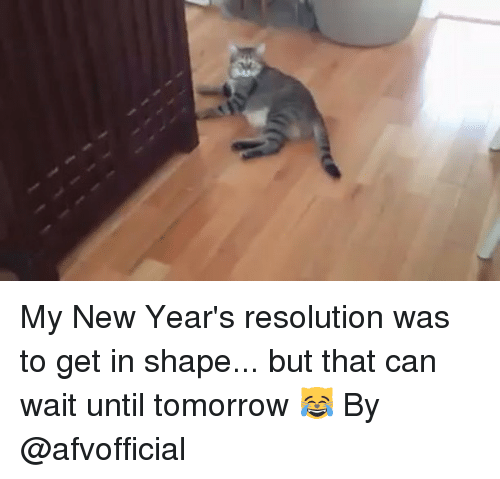 New Year's Resolutions, Trendy, and Resolution: My New Year's resolution was to get in shape... but that can wait until tomorrow 😹 By @afvofficial