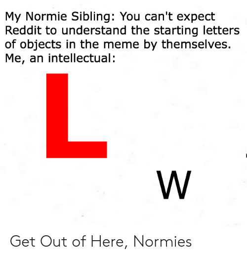 My Normie Sibling You Can't Expect Reddit to Understand the