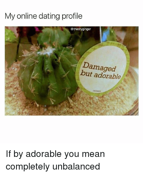 my online dating profile thedryginger damaged but adorable if by 26906698 25 best dating memes