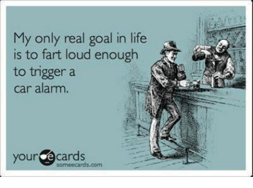 Memes, Alarm, and Alarming: My only real goal in life  is to fart loud enough  to trigger a  car alarm.  your  e cards  com