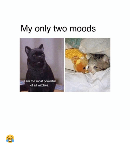 Memes, Powerful, and 🤖: My only two moods  am the most powerful  of all witches. 😂