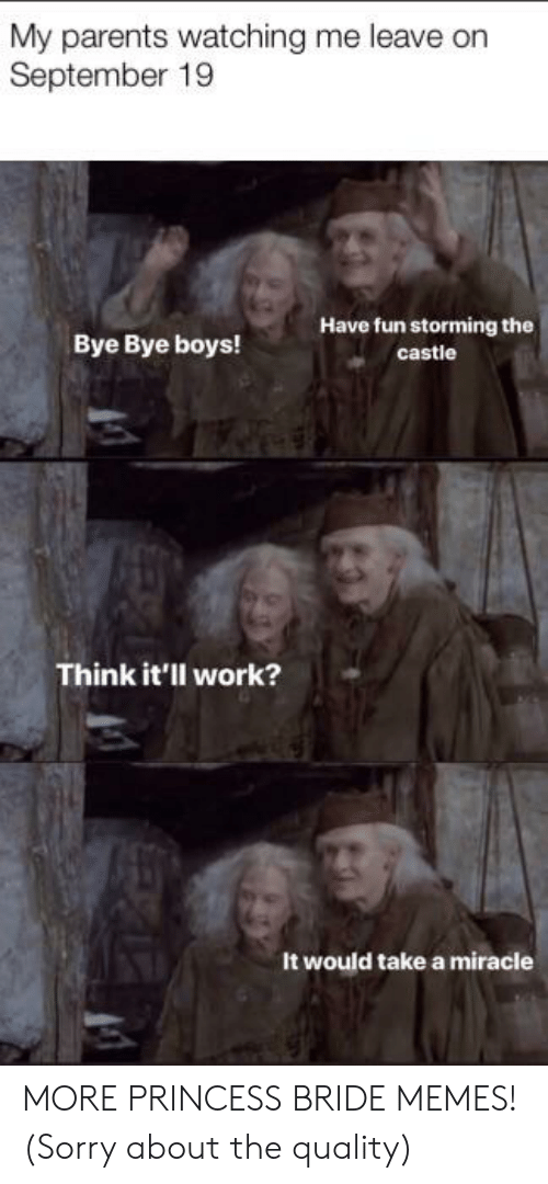 Memes, Parents, and Sorry: My parents watching me leave on  September 19  Have fun storming the  Bye Bye boys!  castle  Think it'll work?  It would take a miracle MORE PRINCESS BRIDE MEMES! (Sorry about the quality)