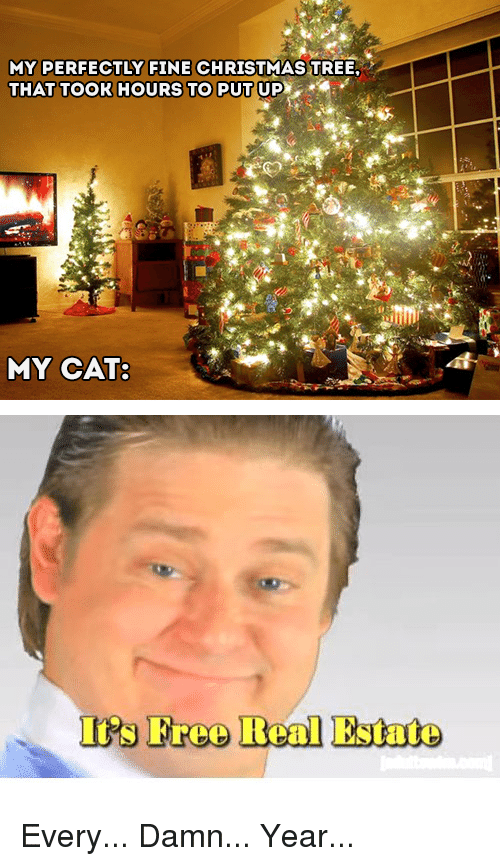 Christmas, Funny, and Christmas Tree: MY PERFECTLY FINE CHRISTMAS TREE,  THAT TOOR HOURS TO PUT UP  MY CAT:  Is Freo Real Estate Every... Damn... Year...