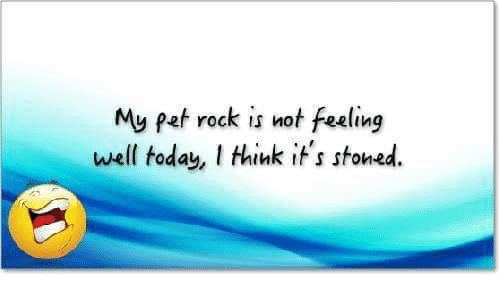 My pet rock is not feeling well today think its stoned meme on me memes pets and today my pet rock is not feeling well today altavistaventures Gallery