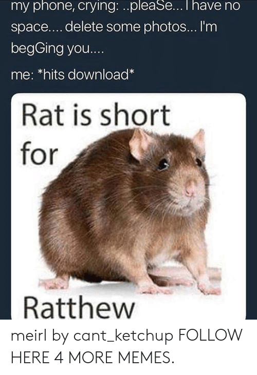 Crying, Dank, and Memes: my phone, crying: ..pleaSe...T have no  space.... delete some photos... I'm  begGing you...  me: *hits download*  Rat is short  for  Ratthew meirl by cant_ketchup FOLLOW HERE 4 MORE MEMES.