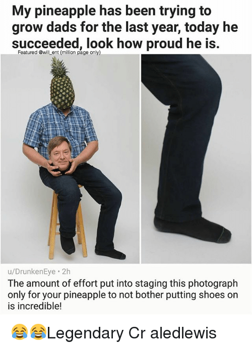 Memes, Shoes, and Pineapple: My pineapple has been trying to  grow dads for the last year, today he  succeeded, look how proud he is  Featured @will ent (million page only)  u/DrunkenEye. 2h  The amount of effort put into staging this photograph  only for your pineapple to not bother putting shoes on  is incredible! 😂😂Legendary Cr aledlewis