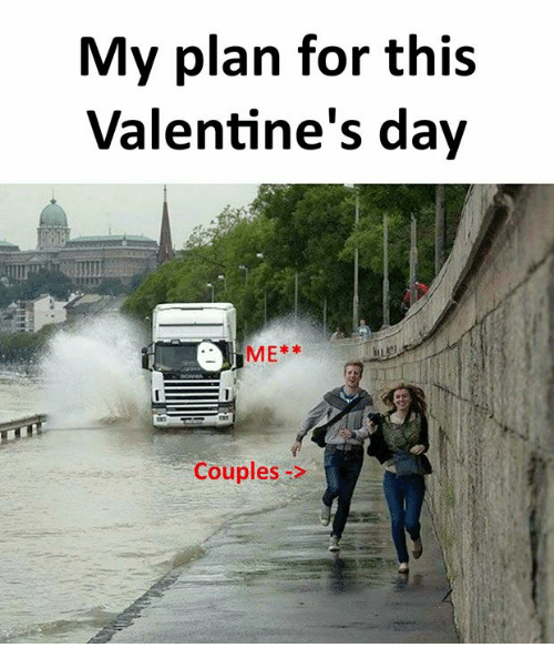 My Plan For This Valentines Day Me Couples Funny Meme On Meme