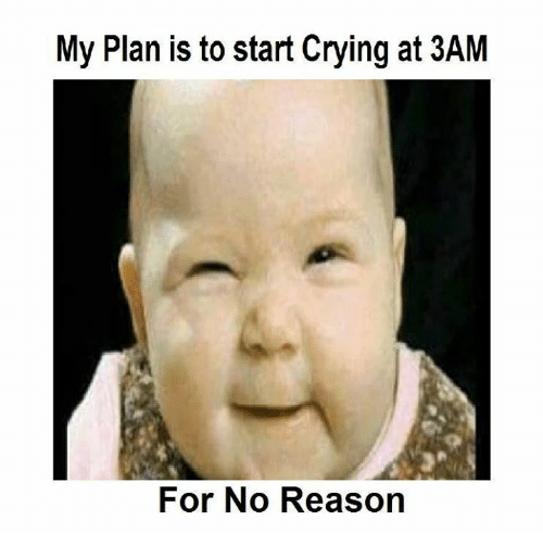 my plan is to start crying at 3am for no 5447723 ✅ 25 best memes about crying crying memes