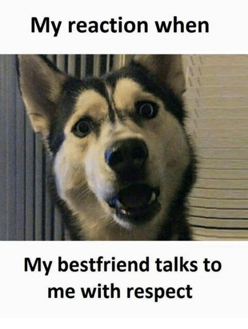 Respectfully, Respectively, and Respectful: My reaction when  My bestfriend talks to  me with respect