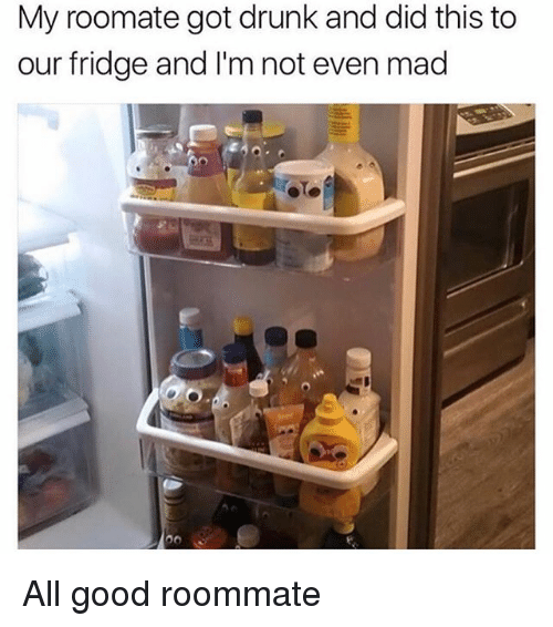 Drunk, Memes, and Roommate: My roomate got drunk and did this to  our fridge and I'm not even mad All good roommate
