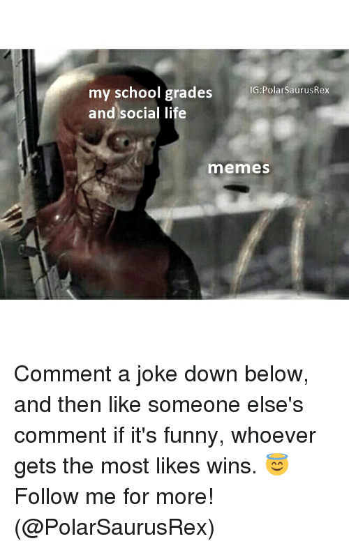 Funny, Life, and Memes: my school grades  IG:PolarsaurusRex  and social life  memes Comment a joke down below, and then like someone else's comment if it's funny, whoever gets the most likes wins. 😇 Follow me for more! (@PolarSaurusRex)