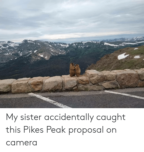 Camera, Pikes Peak, and Proposal: My sister accidentally caught this Pikes Peak proposal on camera