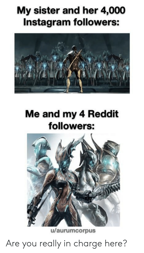 My Sister and Her 4000 Instagram Followers Me and My 4 Reddit