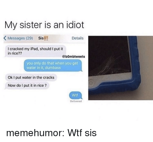 Ipad, Tumblr, and Wtf: My sister is an idiot  KMessages (29) Sis!  Details  I cracked my iPad, should I put it  in rice??  @bOmbtweets  you only do that when you get  water in it, dumbass  Ok I put water in the cracks  Now do I put it in rice?  Wtf  Deliverecd memehumor:  Wtf sis
